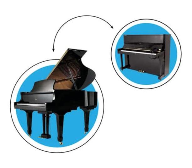 dan piano cho thue