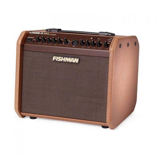 ampli guitar thung Fishman Loudbox Mini Charge