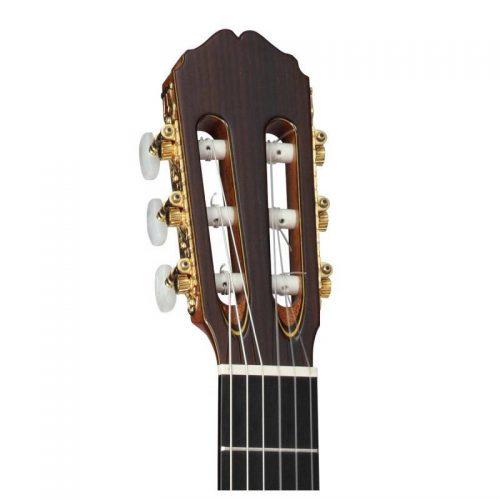 can dan guitar Takamine H8SS