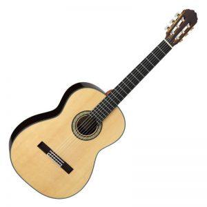 guitar Takamine H8SS