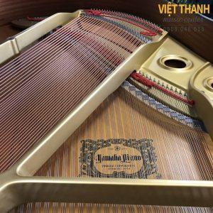 may dan grand piano Yamaha G2B