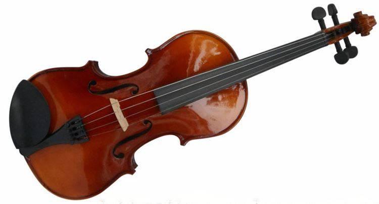 Violin Omebo RV-205