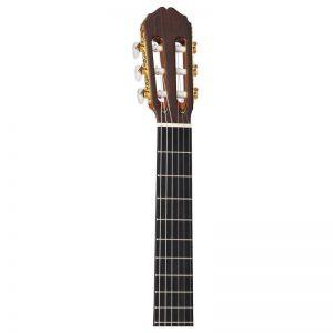 can dan guitar Takamine TH90
