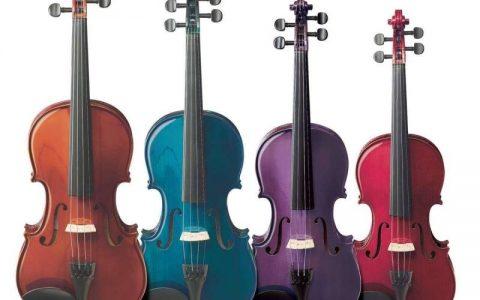 dan violin chuyen nghiep