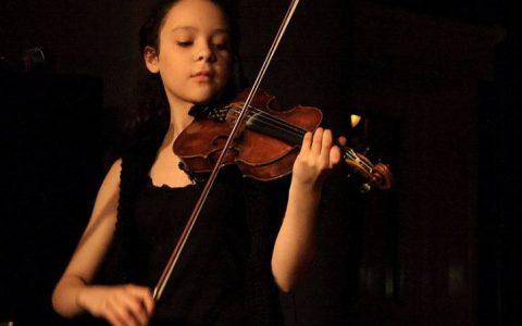 Các hãng đàn violin tốt được nhiều người ưa chuộng