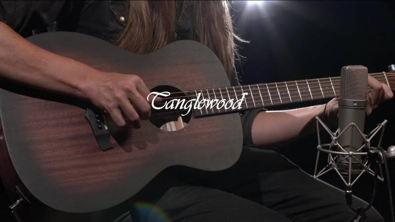 dan guitar tanglewood