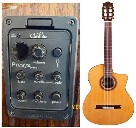 Guitar Classic Cordoba C1M CE co eq
