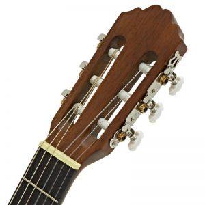 can dan guitar Greg Bennett CNG-1