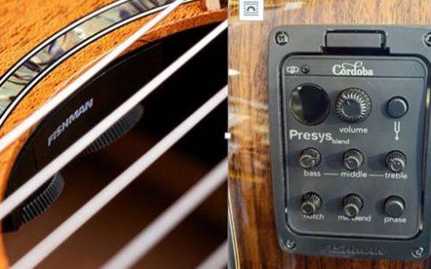 Giới thiệu EQ và các mẫu đàn guitar có EQ