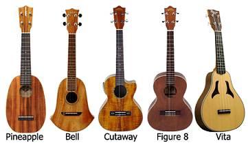 hinh dang dan ukulele