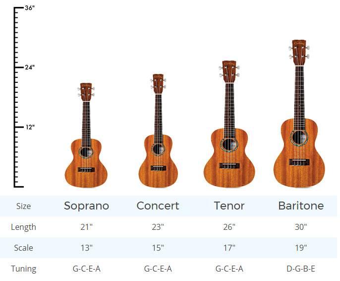 kich thuoc dan ukulele
