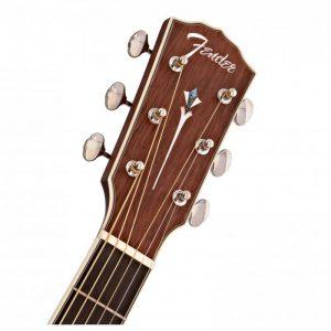can dan guitar Fender PM-1 Dreadnought NE