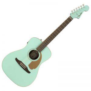 dan guitar Fender Malibu Player