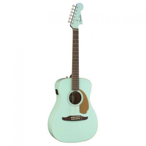 guitar Fender Malibu Player