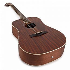 guitar Fender PM-1 Dreadnought NE