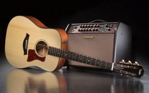 loa cho guitar thung