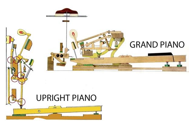 bo co dan grand piano va upright piano