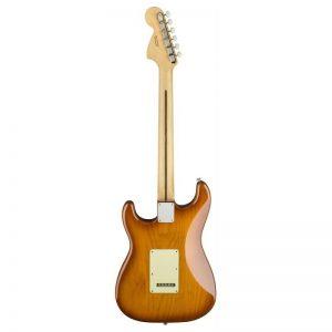 mat sau guitar dien fender american performer stratocaster rw honey burst
