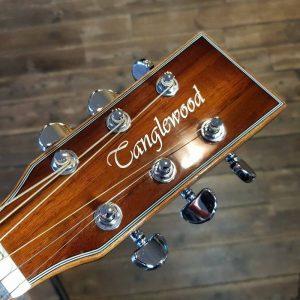can dan guitar Tanglewood TW4 KOA
