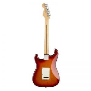 mat sau guitar dien fender player stratocaster plus top mn aged cherry burst
