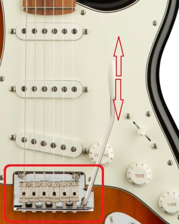 ngua dan guitar dien fender player stratocaster pf 3 colors sunburst