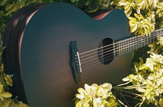 dan guitar