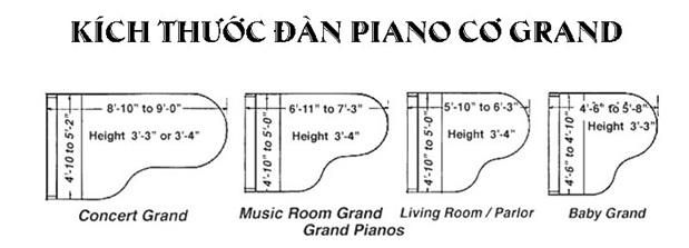 kich thuoc dan grand piano