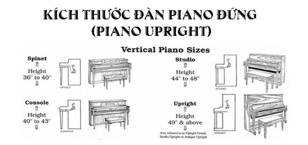 kich thuoc dan piano upright